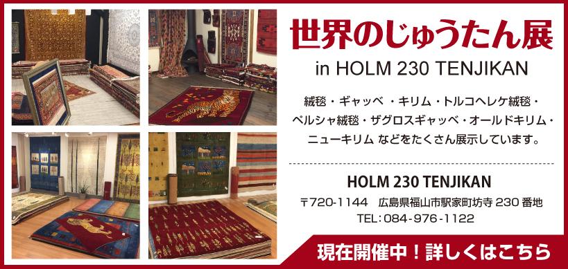 Holm 230
